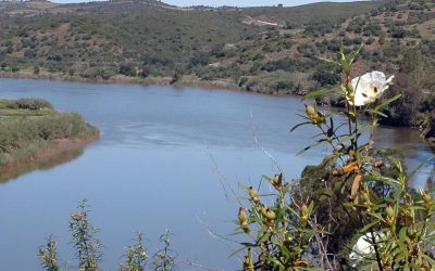 Guadiana The hidden algarve walking Tour